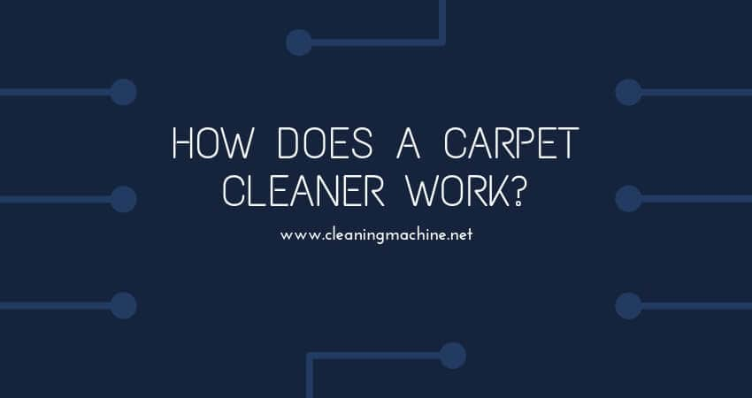 7 Best Commercial Carpet Extractor Reviews In 2019