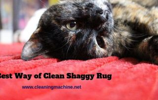 How to Clean a Polyester Shaggy Rug?