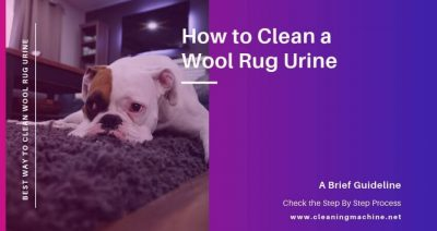 How to Clean a Wool Rug Urine