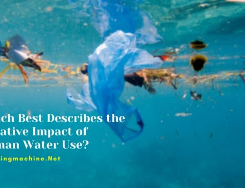 Which Best Describes the Negative Impact of Human Water Use?