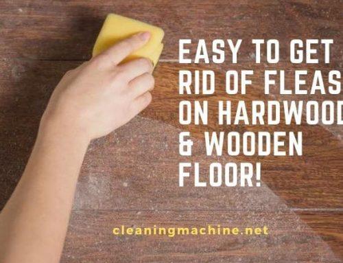 How to Get Rid of Fleas on Hardwood & Wooden Floor?