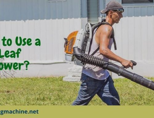 How to Use a Leaf Blower?